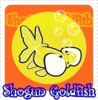 Shogun Goldfish Quality